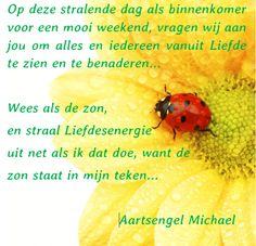 Leer ook werken met de engelen bij engelencursus.nl