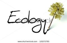 stock photo : Ecology concept, wooden pencil with tree