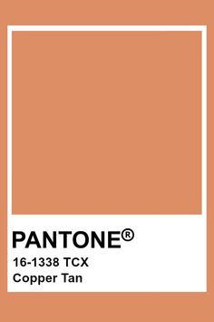 This is a shade of pink. Pantone Swatches, Paint Swatches, Color Swatches, Brown Pantone, Pantone Orange, Pantone Colour Palettes, Pantone Color, Colour Pallete, Color Schemes