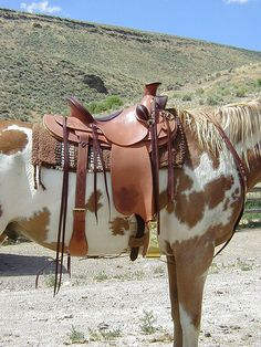 Diamond Cactus Saddlery, Gregg E. McDonald, Maker