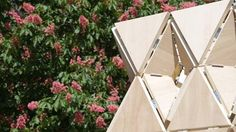 This Wood Pavilion is Supported Entirely Through Origami Folds