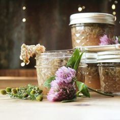 Wildflower Jam with Red Clover & Pineapple Weed on nittygrittylife.com