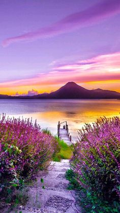 Purple Field and Lake Diamond Painting. Look at the colors! Clearly one of the best diamond painting kits we'll see this year. Beautiful Landscape Wallpaper, Beautiful Landscapes, Beautiful Nature Pictures, Amazing Nature, Beautiful Places, Nature Pics, Landscape Photography, Nature Photography, Photography Flowers