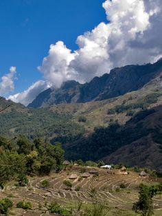 Mountain village in East Timor http://www.travelbrochures.org/123/asia/holiday-trip-to-east-timor