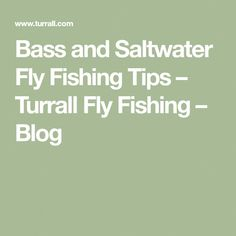 fly fishing tips #flyfishingbasics Fly Fishing Basics, Fly Casting, Live Bait, Saltwater Flies, Fly Rods, Sea Fish, Lessons Learned, It Cast