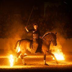 """Feuer und Licht: Bei der Show des Pferdestammbuch SH/HH ist in diesem Jahr """"Alles Zirkus"""" gewesen. Foto Andreas Thomsen www.kn-online.de/reiten"""
