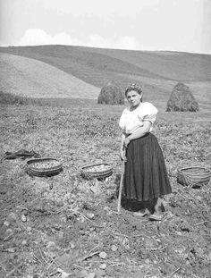 Vykopávanie zemiakov motykou. Nelokalizované. Archív negatívov SNM Martin. My Antonia, Carpathian Mountains, Heart Of Europe, Mountain Landscape, Costume Dress, Eastern Europe, Czech Republic, Folklore, Homemaking