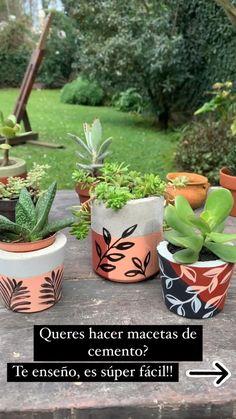 Succulents In Containers, Container Plants, Container Gardening, Concrete Planters, Garden Planters, Planter Pots, Plant Care, Potted Plants, Flower Pots