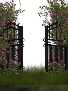 entrance to rose garden by collect-and-creat