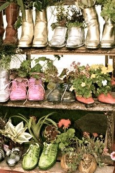 Shoe planters are a fun way to add interest to your garden! Check out Old Time Pottery's garden centers this season for great plants and potting soil to get your show planters started!