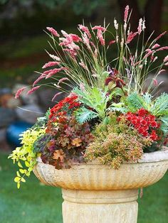 Chrysanthemum ('Blushing Emily'), rubygrass ('Pink Champagne'), Golden Globes (cinnamon-red, green kale, yellow-green), Tiny Toes coleus, Dolce Crème Brulee coral bells.
