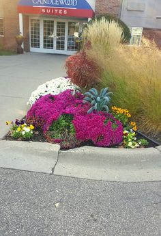 Beautiful fall color at a commercial site in Richfield by Barrett Lawn Care! #fallplanters #fallcolor #fallflowers