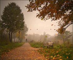 Znalezione obrazy dla zapytania jesienna ulewa  w parkuobrazy