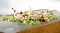 2008 - La Bruma by Pelut i Pelat Quique Dacosta Restaurante