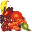 www.living-foods.com - into raw eating & juicing? this site offers books, resources & recipes +