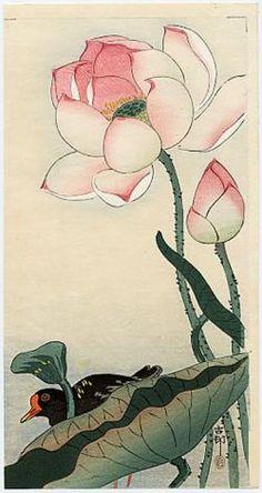 Koson A Gallinule beneath Flowering Lotus