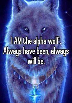 I am the alpha of my own life, I'm in charge, I make my own decisions, i don't follow others they follow me