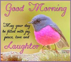 Good Morning...May your day to filled with joy, peace, love and laughter.