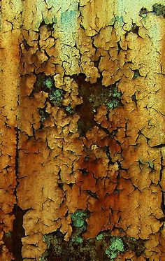 patina - rust - peeling paint - beautiful decay ~ LOVE This Look . Patterns In Nature, Textures Patterns, Art Patterns, Peeling Paint, Tree Bark, Beautiful Textures, Natural Texture, Natural Colors, Gold Texture