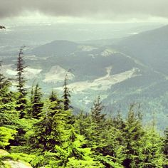 Top of #BurkeMountain. #coquitlam #mountain #hiking #climbing #adventure #trees #hike #amazing #view #tired