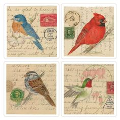 CoasterStone AS1355 Absorbent Coasters, Birds on Letters…