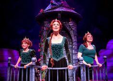 Chicago Shakespeare Theater: Shrek The Musical