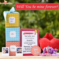 """Delight your treasured person this day and reward them for how awesome life has been after you met them with the """" Will you be Mine"""" gifts assemble. Find it on BookTheSurprise. Cuddle Pillow, Heart Pillow, Gift Hampers, Surprise Gifts, Chocolates, Unique Gifts, Messages, Awesome, Cards"""