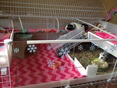 Snowflake decals on clear acrylic to decorate the cage