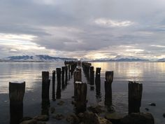 Puerto Natales, Magallanes. Chile Patagonia, Chile, New York Skyline, Travel, Christmas, Past Tense, Trips, Chili Powder, Traveling