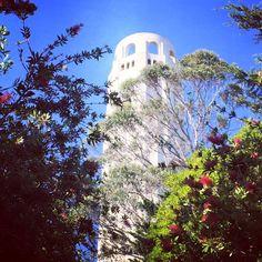 Coit Tower in San Francisco, California.
