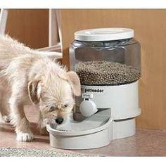 Small Pet Autofeeder