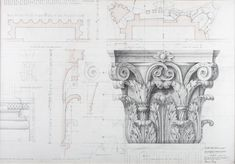 Corinthian Capital. Drawn by Francis Terry. Pencil on tracing paper. Exhibited in the Three Classicists exhibition at the RIBA 2010.