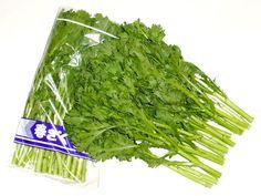 「春菊」 鍋料理には欠かせない栄養価の高い緑黄色野菜のひとつです。  カルシウムやミネラルが多く含まれ、独特の強い香りの成分には、食欲増進や咳を鎮める働きがあると言われています。  加熱して調理するイメージですがアクは少なく、冬から春にかけての旬の時期のものは、葉先を生で召し上がるのもオススメです。