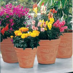 Hooks and Lattice is a manufacturer and supplier of window boxes, flower boxes, exterior shutters, hanging baskets, planters and faux balconies. Garden Planters, Planter Pots, Resin Planters, Mediterranean Garden, Garden Fountains, Perfect Gift For Her, Flower Boxes, Hanging Baskets, Potted Plants