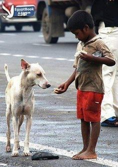"""No act of kindness, no matter how small, is ever wasted."" - Aesop ... How much has this little boy got? Yet he's willing to share."