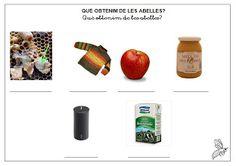 Foto: Escrivim el nom de les fotografies i encerclem els 3 productes que obtenim de les abelles: gelea reial, mel i cera.