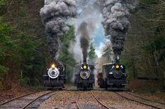 3 Steam Amigos