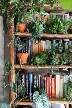 Room With Plants, House Plants Decor, Brooklyn Apartment, Dream Apartment, Brooklyn House, Apartment Living, Apartment Office, Apartment Therapy, Plantas Indoor