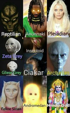 Ancient aliens 624874517027390199 - Have you seen any of these? Tell me more @ DivineSistar on fb Source by Aliens Und Ufos, Ancient Aliens, Ancient History, Illuminati, Amazing Race, Types Of Aliens, Alien Photos, Alien Concept Art, Fox Racing