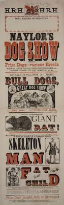 Pieces from the exhibtion Evolving English: One Language Many Voices, currently showing at the British Library. Victorian Design, Victorian Era, Old Circus, Slab Serif, Vintage Dog, Vintage Typography, Writing Styles, British Library, Dog Show