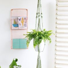 A beautiful natural cotton hand-dyed plant hanger to showcase your favourite indoor plant. Available also in natural or please email us for a. Rope Basket, Spring Green, Green Plants, Plant Hanger, Craft Stores, Indoor Plants, Weaving, Crafty, Image
