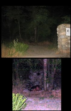 "scatteredwritingonthewall:  WHAT IS IN THE BACK OF MY PHOTO????!!!! The picture on top is completely untouched. For the photo on bottom  I  used Photoshop to enhance the ""thing"" in my picture.  I took the photograph while ghost hunting at a very old and bizarre park in Salt Lake City, UT at about 3am.  I did not see anything in person.  I  was simply flashing random pictures of the darkness whenever I got a spooky feeling."