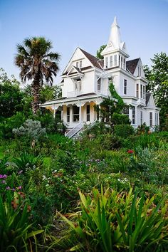 Victorian House, Amazing White Colors