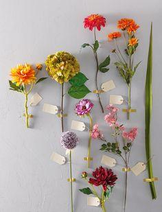 Un herbier pas si sauvage... Composition de fleurs artificielles