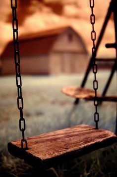 Who doesn't like a swing.. I kinda like the wood swing with a chain. rope or chain hmm