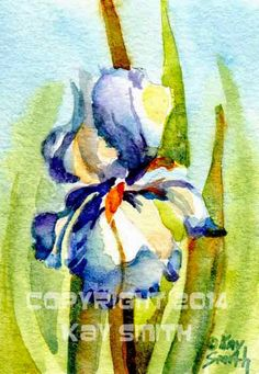 Art Initiative Aceo Flowers Blooming Painting Original Watercolour Floral Art Card