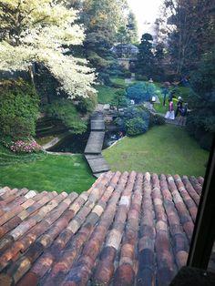 Bonsai, Sidewalk, Bonsai Trees, Side Walkway, Sidewalks, Pavement, Walkways, String Garden