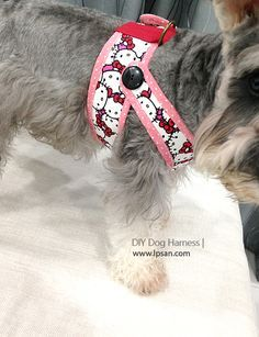 free PDF pattern provided. Make your furry friend a handmade harness.