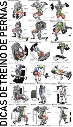 Perna ( quadríceps, bíceps femural, adutor e abdutor) (Fitness Workouts Abs) Fitness Workouts, Fitness Hacks, Body Workouts, Biceps Workout, Leg Workout Routines, Weighted Leg Workout, Male Workouts, Leg Press Workout, Weight Training
