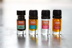 Add pure flavor and aroma to any food or cocktail with a single drop of the Chef's Essences.
